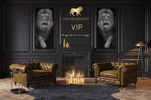 VIP Lounge Pagev1.jpg