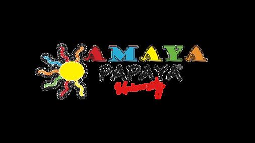 University logo  (1).png