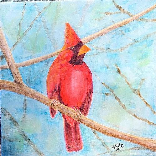 Bob the Cardinal