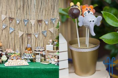 safari cake pops 2.jpg