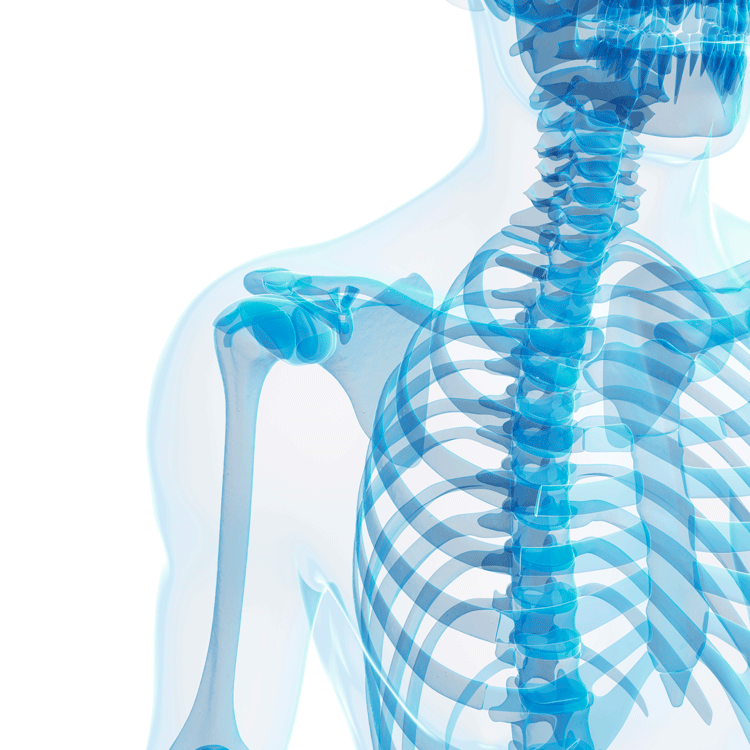 bone health and nutrition