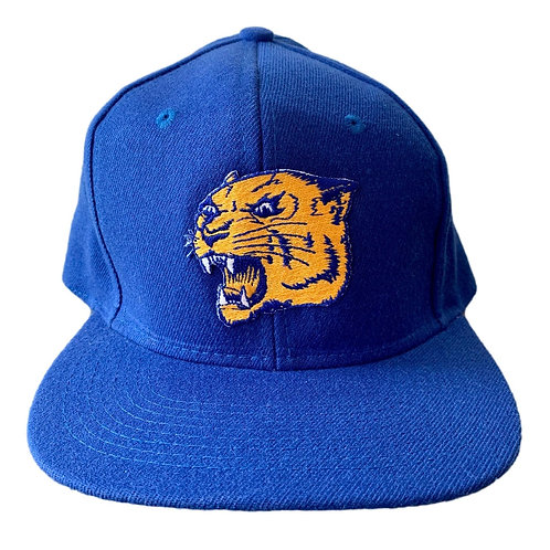 Vintage Pitt Panthers Plain Logo Snapback Hat By Top Of The World