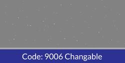 9006 Changable