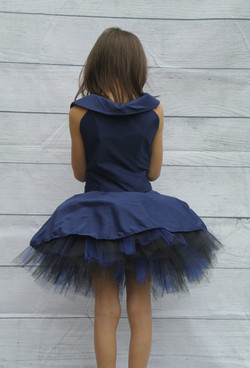 Blue Tulle Party Dress