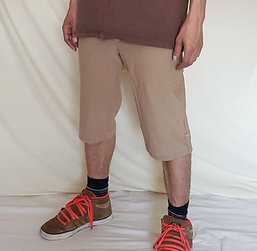 Beige Shorts_edited.jpg