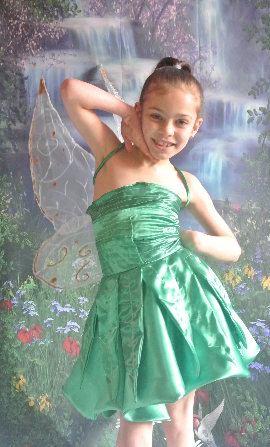 Tinkerbell Fairy Dress