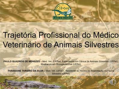 Papo de Jacaré: Trajetória Profissional do Médico Veterinário de Animais Silvestres