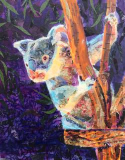 Kerry the Koala