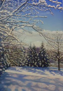'Valerie's Winter Garden'