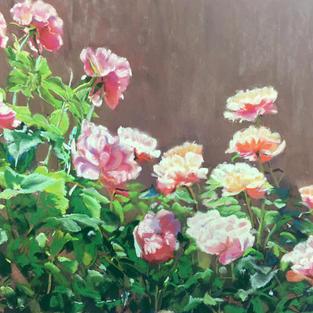 Rising Roses