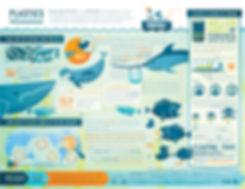 OWOO_PlasticsInfographic_2012_b.jpg