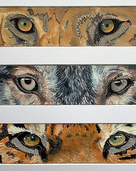 www.wirepictures.co.uk, The Hunters, wire art, painting, kerry jeffs, surreal art, modern art, tiger eyes, wolf eyes, lion eyes, hunters eyes