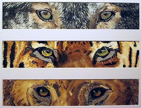 modern art, The Hunters, eyes, wire art, wire painting, tiger eyes, wold eyes, lion eyes, wirepictures.co.uk