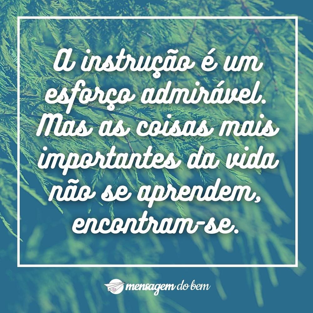 A instrução é um esforço admirável. Mas as coisas mais importantes da vida não se aprendem, encontram-se.