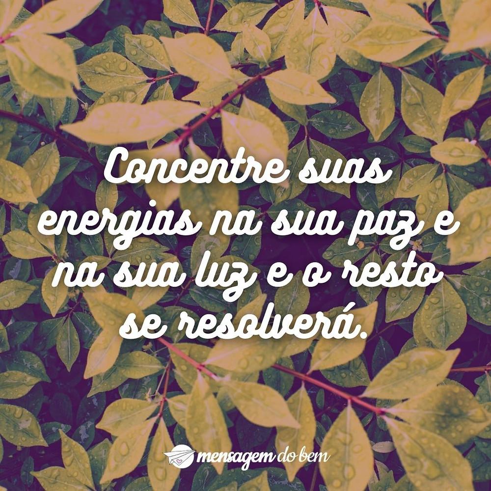 Concentre suas energias na sua paz e na sua luz e o resto se resolverá.