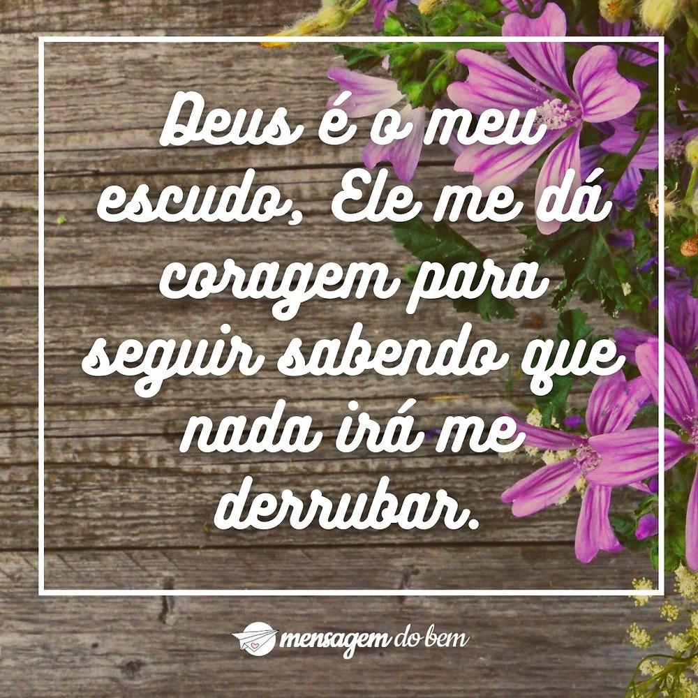 Deus é o meu escudo, Ele me dá coragem para seguir sabendo que nada irá me derrubar.