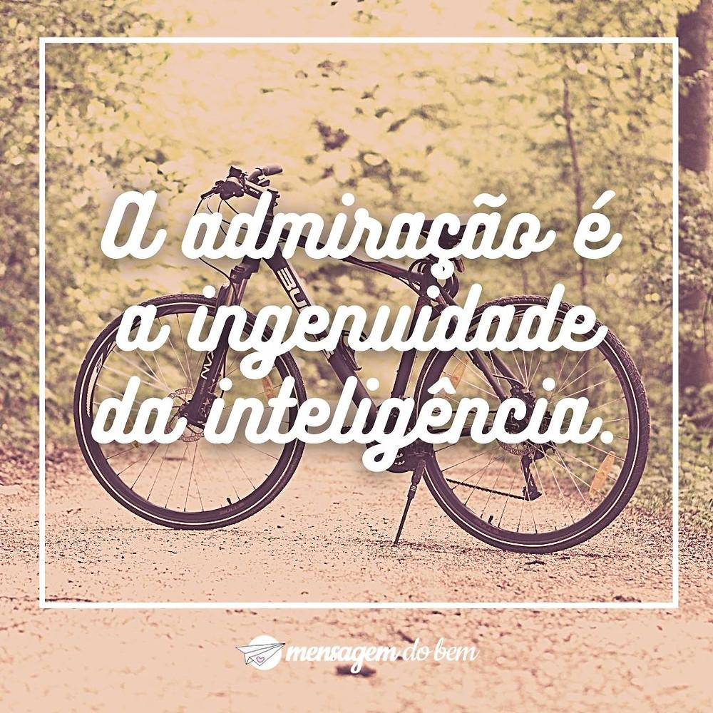 A admiração é a ingenuidade da inteligência.