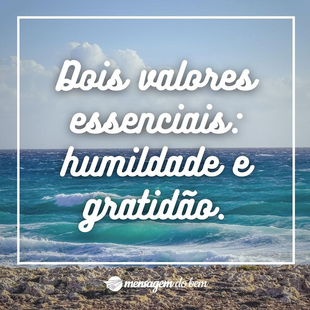 Dois valores essenciais: humildade e gratidão.