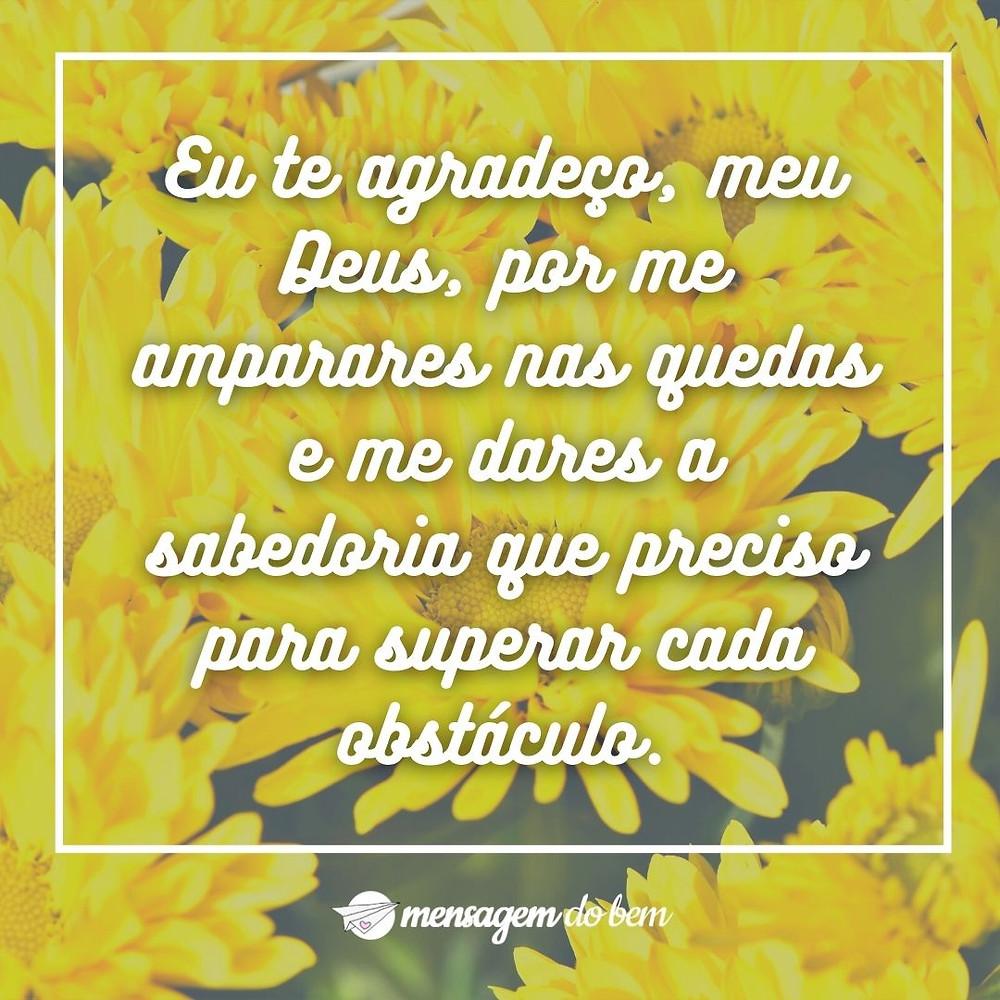 Eu te agradeço, meu Deus, por me amparares nas quedas e me dares a sabedoria que preciso para superar cada obstáculo.