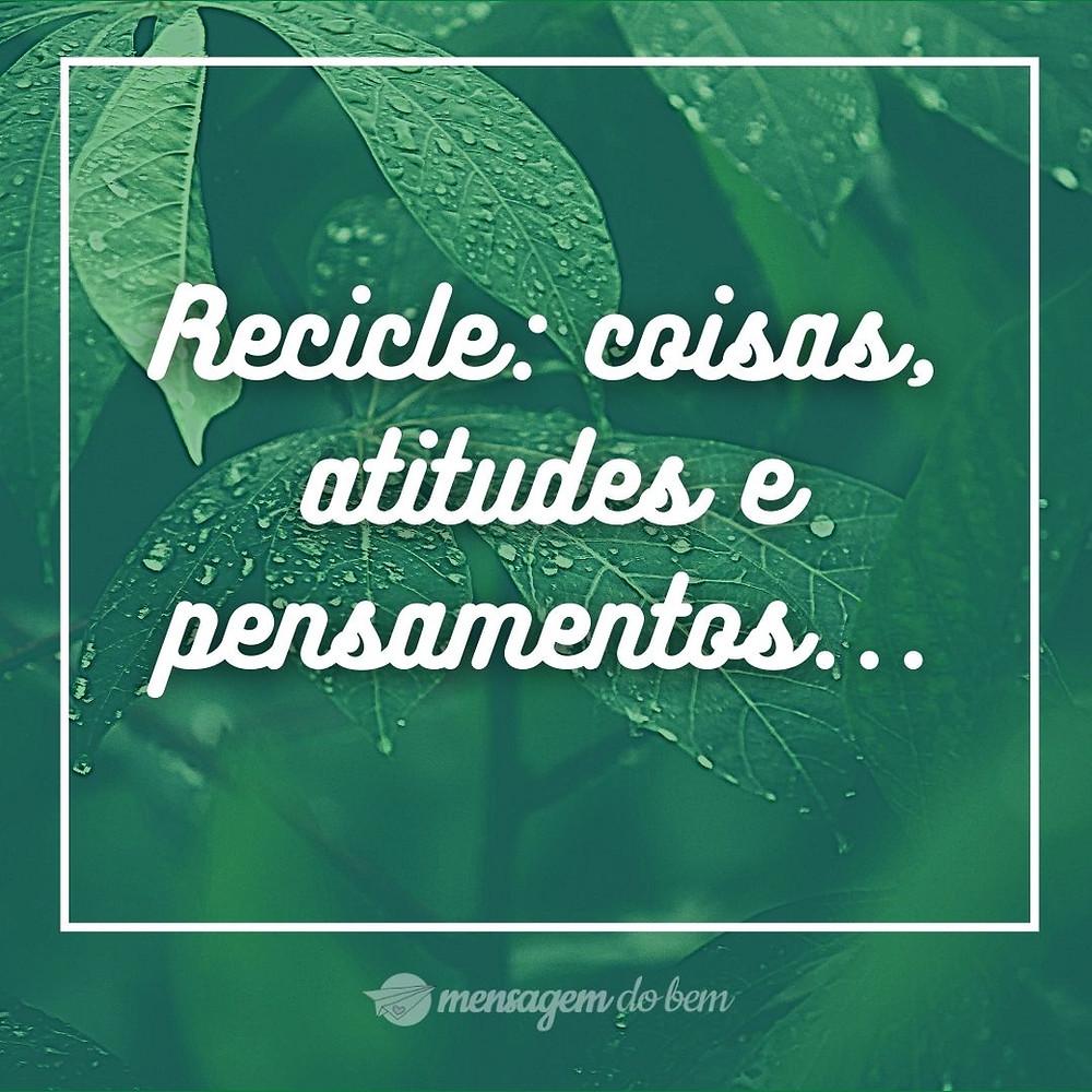 Recicle: coisas, atitudes e pensamentos...