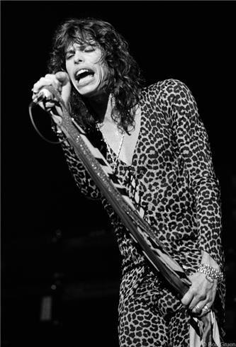 R-277_Aerosmith_STyler1976_Gruen.jpg