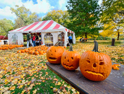 Scared Pumpkins