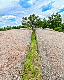 Crack Tree2