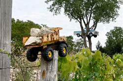 Cat & Tree Truck