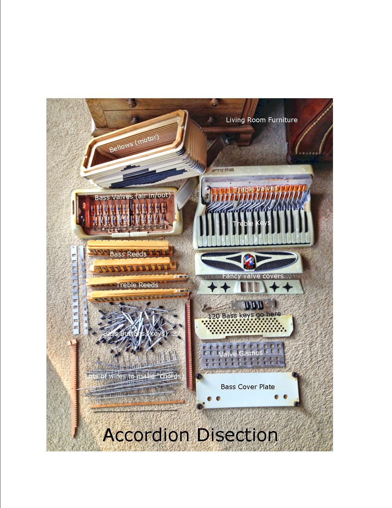 Accordion disection