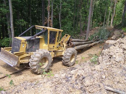 Selling Timber in West Virginia
