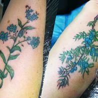 Ink Bird Tattoo
