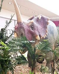 Dinosaurier Mieten Styracosaurus