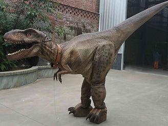 t-rex dino kostüm