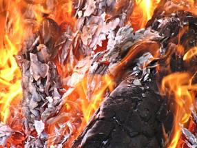 Risque marqué d'incendie en forêt