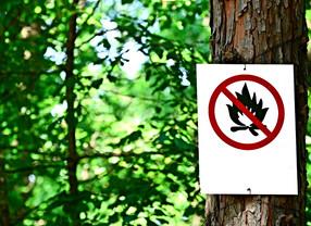 Interdiction des feux en forêt