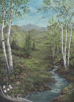 Colorado_Stream