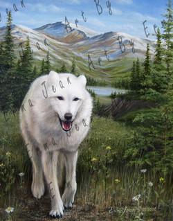 wolf-all01-med