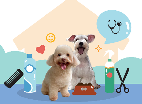 Keeping Your Pets Healthy and Happy in the New Normal