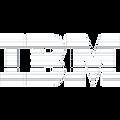 IBM_e_White.png