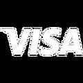 Visa_e_White.png