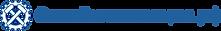 Logo_onlineinspection.png