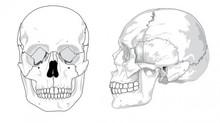 「頭皮の整体」