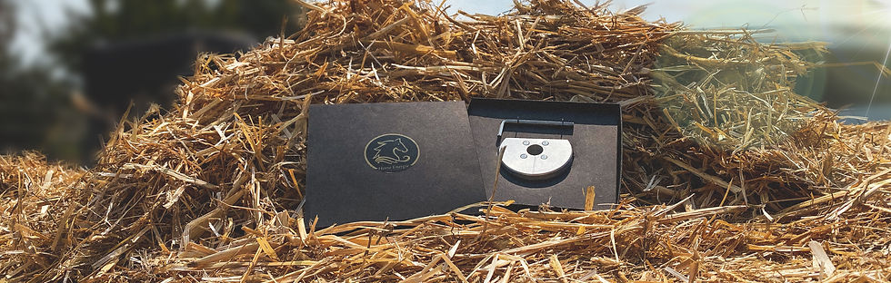 Horse Energie D-Ring System Verpackung