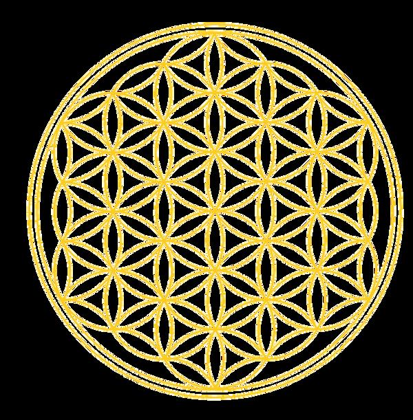 blume-des-lebens-logogold2_1_1_2_1 Kopie