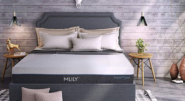 mlily_fusion_luxe_room.jpg