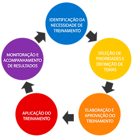 curso-in-company ciclo.png
