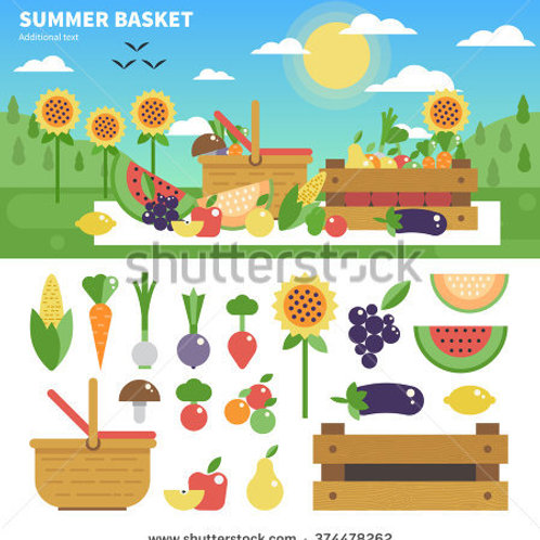 20 Packages of Summer Vegetable Seeds (Value Pack)