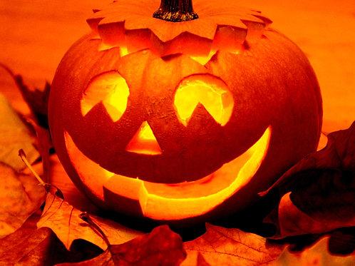 S165X01. Jack O' Lantern Pumpkin