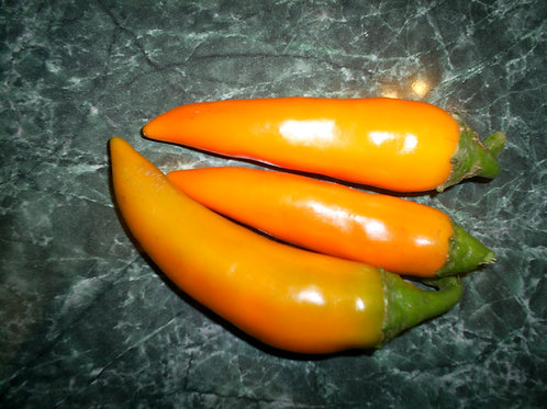 S163X01. Bulgarian Carrot Shipkas Heirloom Pepper