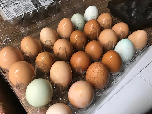 Back Yard Happy Chicken Eggs (2 Dozen)